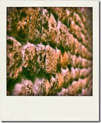 THE_WALL_R-pola