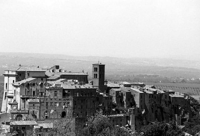 Palio di Sant'Anselmo a Bomarzo, la storia ed il foto racconto