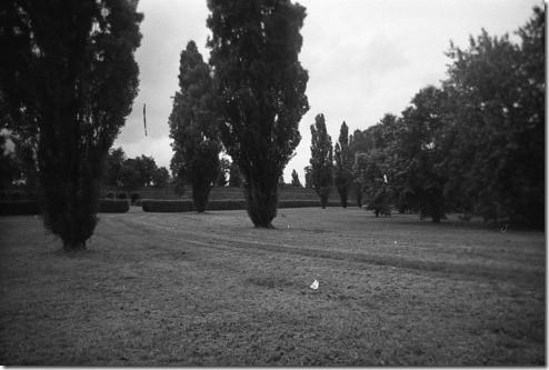 15 - Ferrara, Le Mura, baruliperte