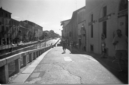 17 - Milano, I navigli, freesia