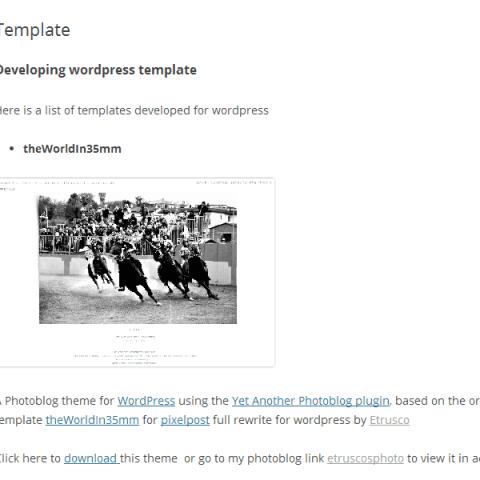template per wordpress