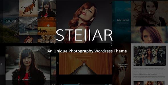 stellar - Sei un fotografo? Ecco i migliori temi per il tuo website in wordpress