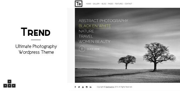 trend - Sei un fotografo? Ecco i migliori temi per il tuo website in wordpress