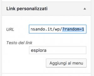 articolo random 300x243 - Random Post: Come creare un link che mostra articoli casuali su wordpress